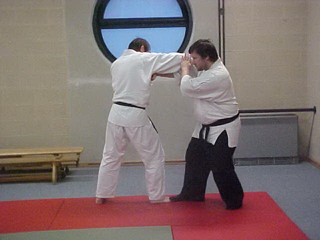 Dojo messancy photo10