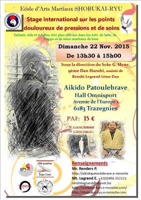 Stage hanshi 22 nov 2015 trazegnies vfinale